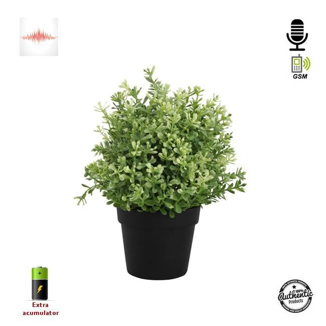 Mini Modul Microfon Gsm cu Funtie de Activare Vocala Integrat in Ghiveci de Flori cu 40 de Zile Autonomie